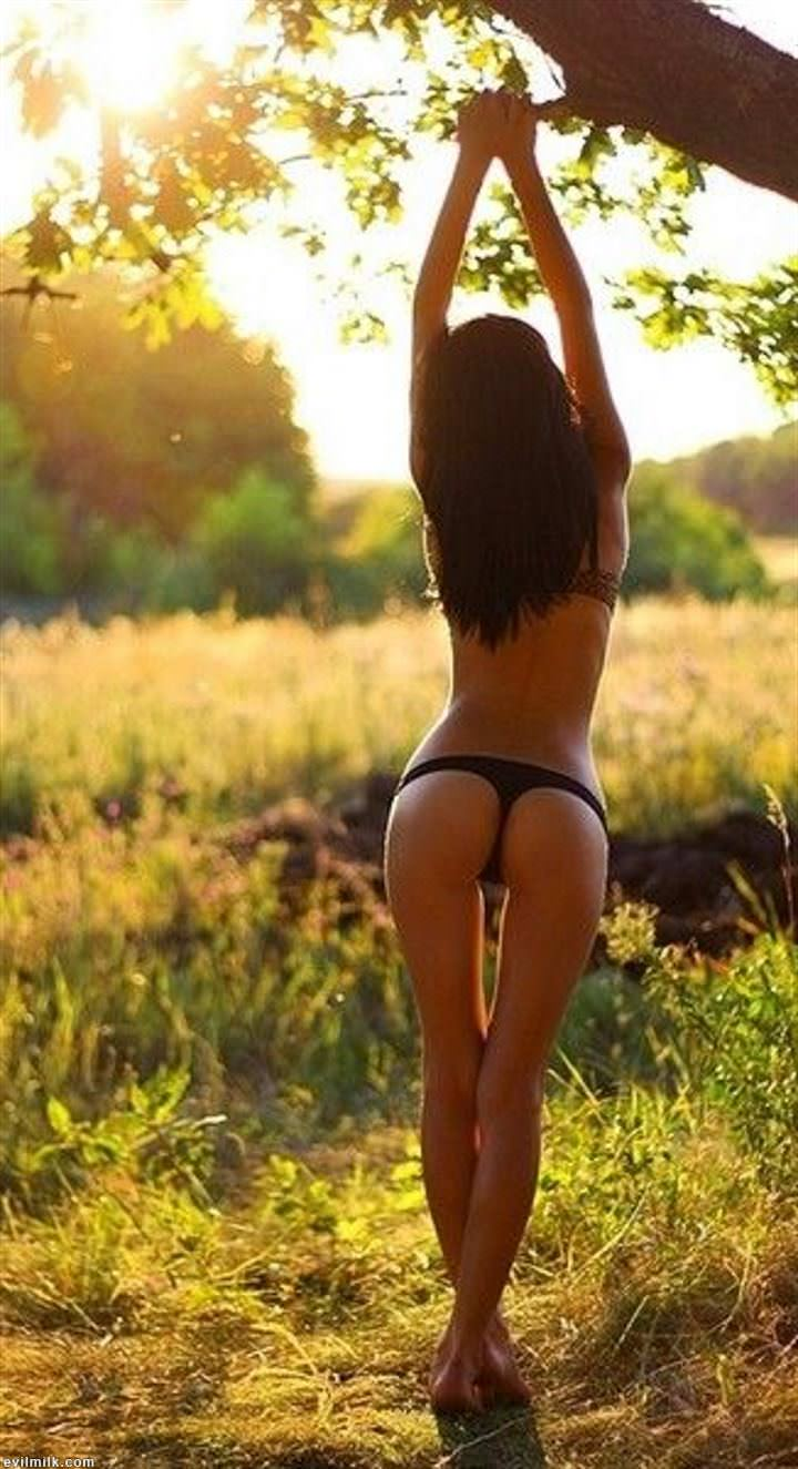 Тощая попка девушек фото, онлайн порно фестиваль лиза спаркс